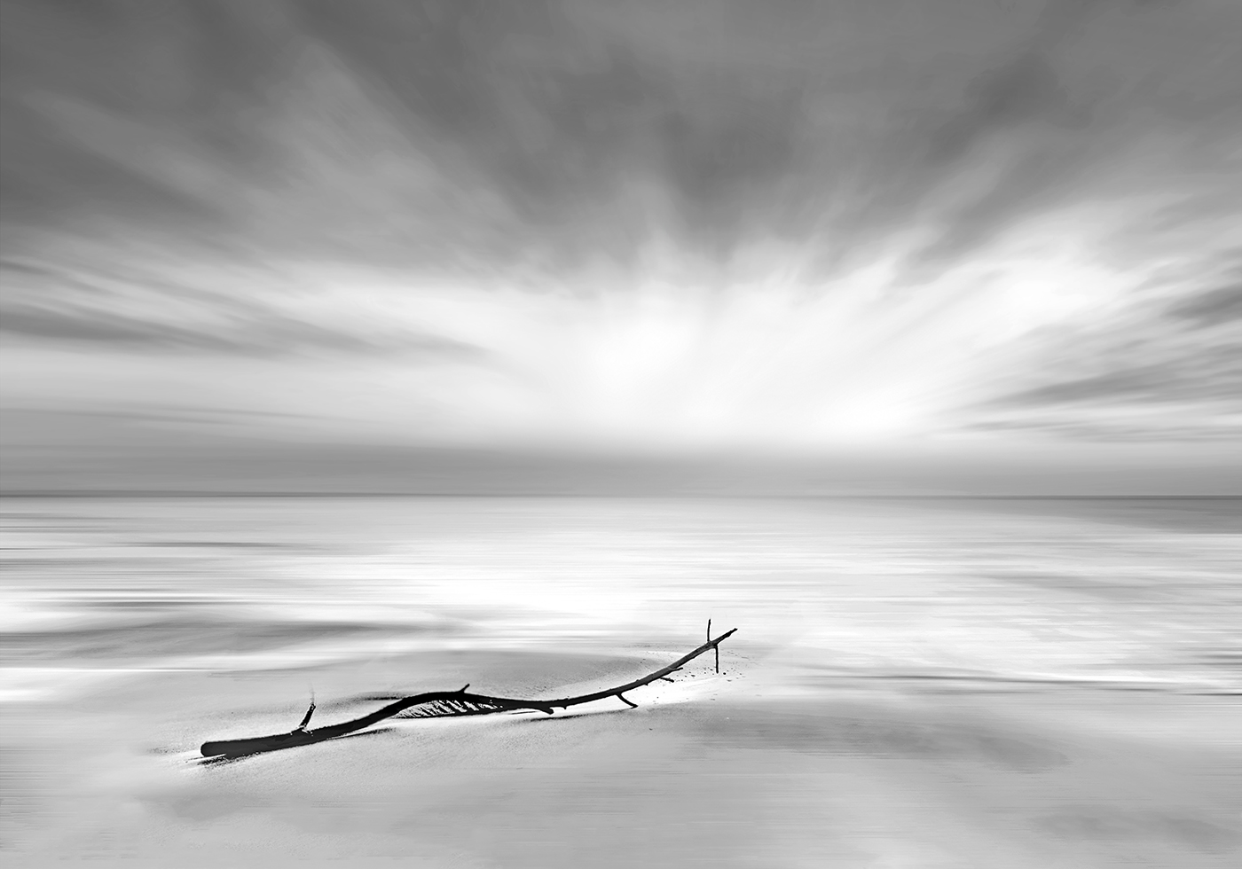 Driftwood by Gerry Priest