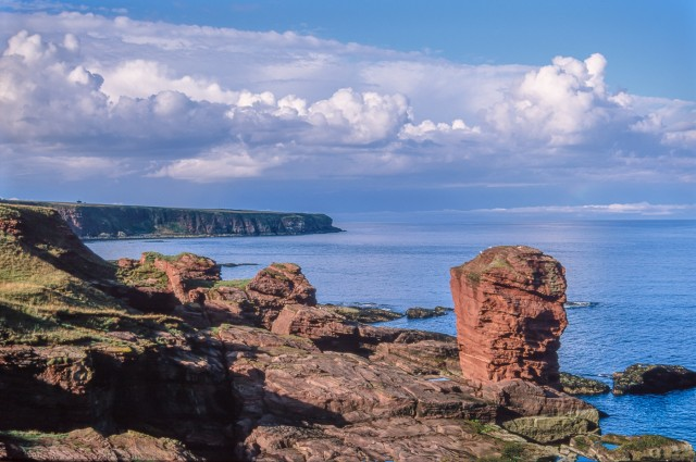 Cliffscape near Arbroath