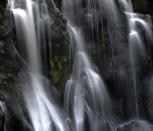 Green in Falls