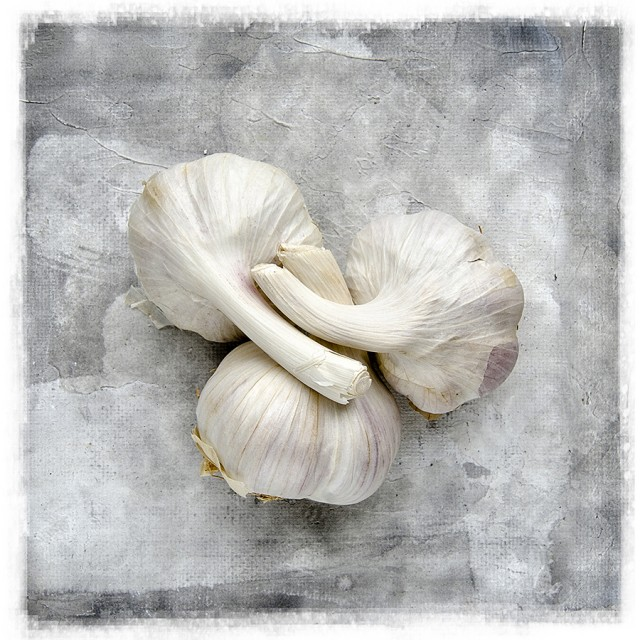 Trio of Garlic