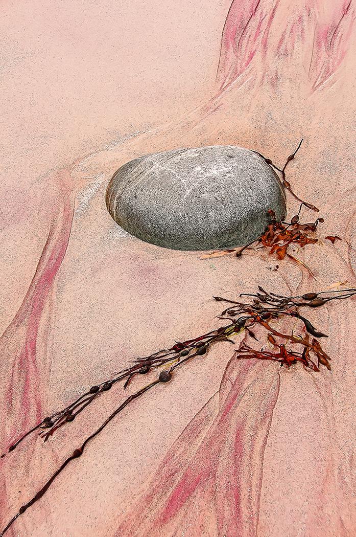 Garnet sand, rock and seaweed