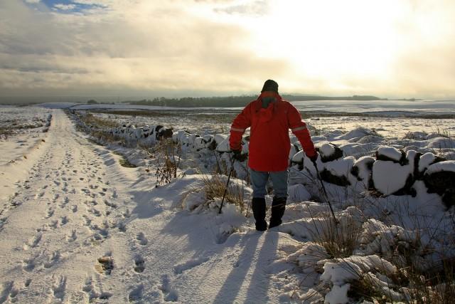 Lomond Walk in the snow