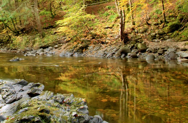 River Tilt autumn reflections