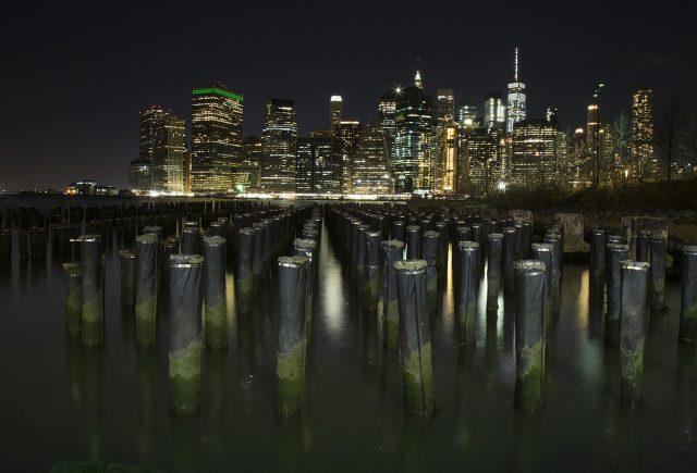 Lights On Manhattan Alison Donald