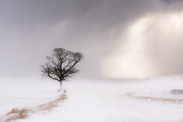 Stormbound - Alison Smith