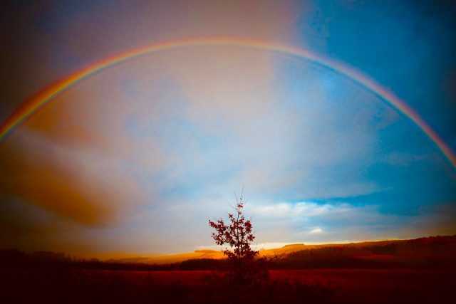I Can Sing a Rainbow