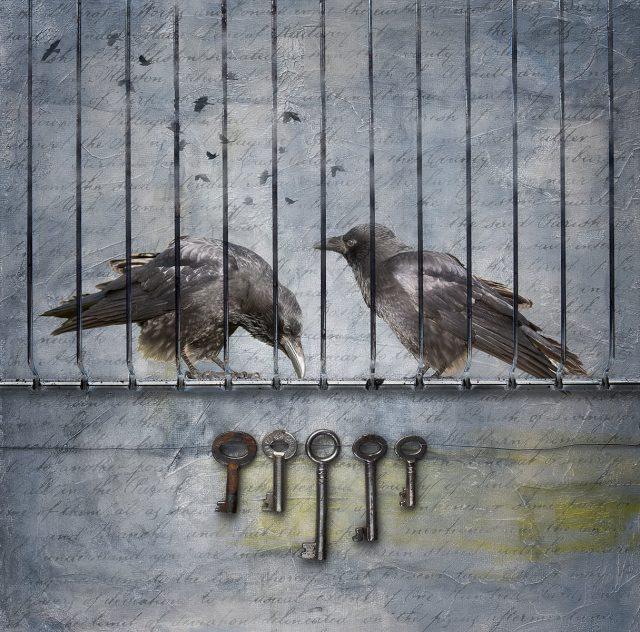 Lockdown-Stan-Farrow